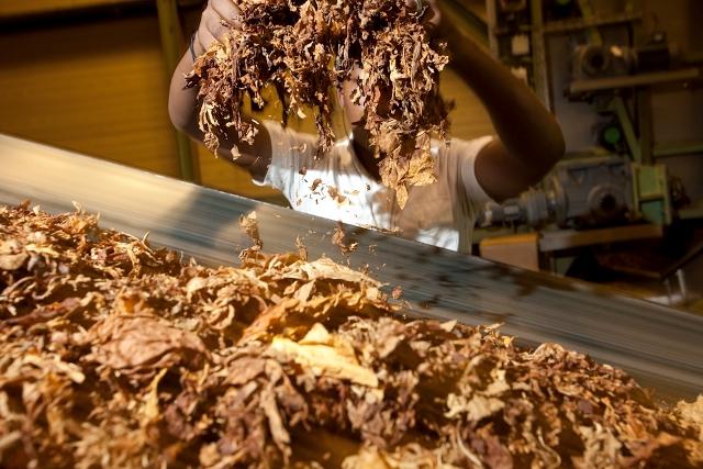 BATSA - tobacco processing